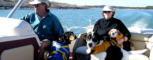 Dogs and Judi on Board