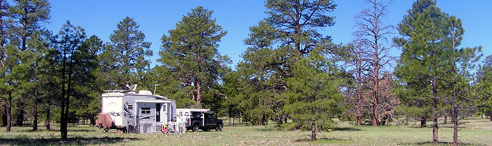 coconino national forest campsite